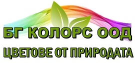 БГ Колорс лого